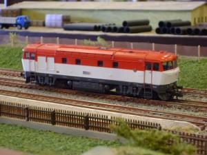 Zmenená veľkosť DSC00652
